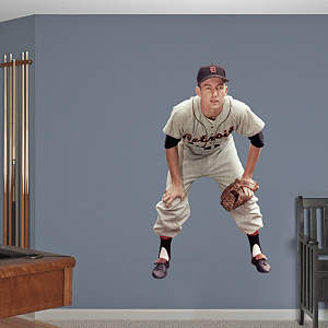 Al Kaline Fathead Wall Decal